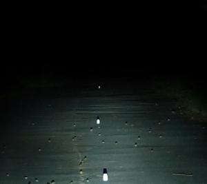 Fahrradbeleuchtung Eyc Fern